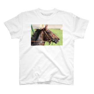 ドゥラメンテ T-shirts