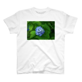 アジサイ T-shirts