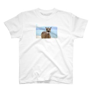 紙食う鹿 T-shirts