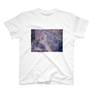 ephemeral T-shirts