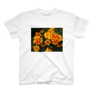 ソフトフォーカス T-shirts