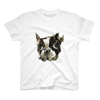 ボストン T-shirts