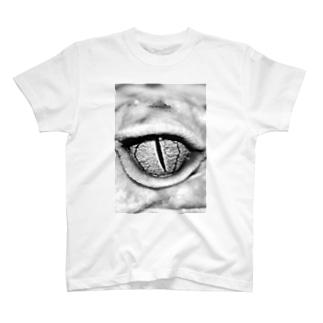 gecko leopard eye T-shirts