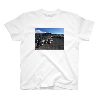 LAVA T-shirts