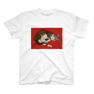 「ぐりこ2号」 T-shirts