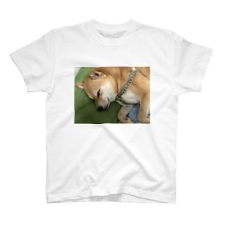 [虎太郎商店] お昼寝中 T-shirts