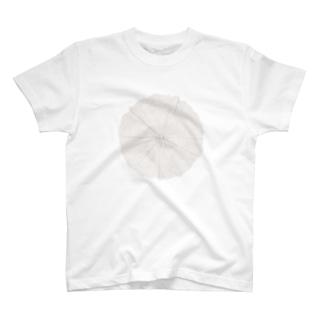 年輪 シリーズ T-shirts