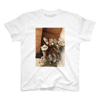 ベーコン T-shirts