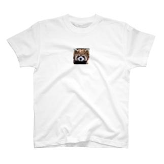 レッサーパンダのシャツ! T-shirts