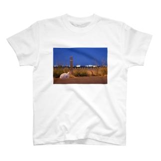 猫の夕涼み ~夜景~ T-shirts