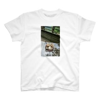 箱根にて T-shirts