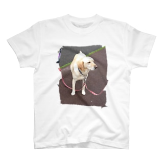 うちのあいけん T-shirts