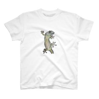 トッケイゲッコー T-shirts
