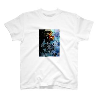 薔薇の影 T-shirts