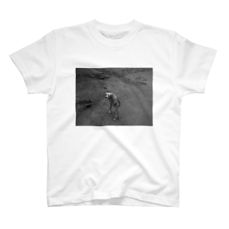 Follow the leader T-shirts