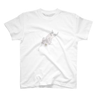 良い T-shirts