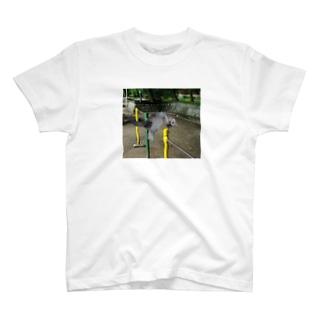 鉄棒で背面跳びするねこ T-shirts