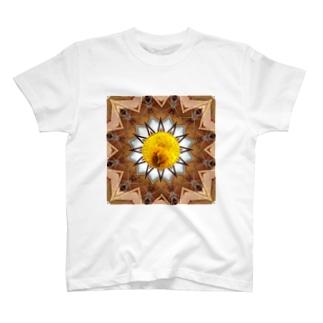 コイン:ビクトリア金貨 T-shirts