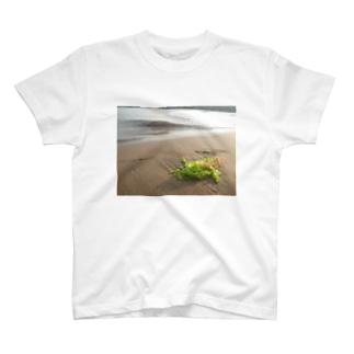 浜辺に打ち上げられた海藻 T-shirts