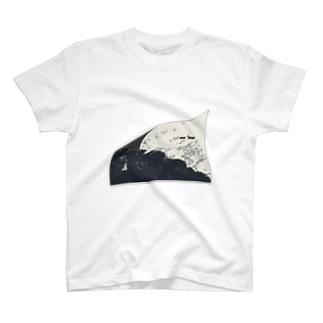 衛星と地表 T-shirts