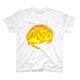トラフカラッパ T-shirts