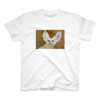 フェネックシリーズ T-shirts