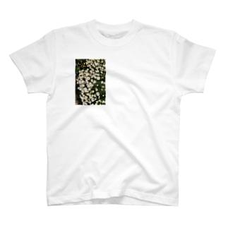 hanadayo T-shirts