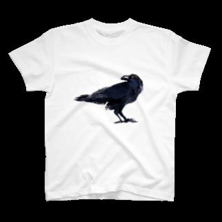 あさこまいの飛ばないカラス T-shirts