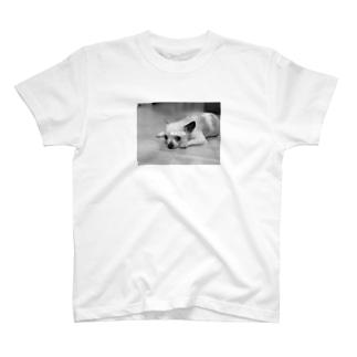 matoi T-shirts