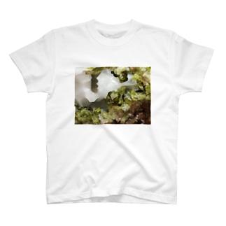 透輝石(双晶) T-shirts