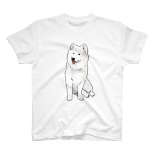 少し不満げなサモエド T-shirts