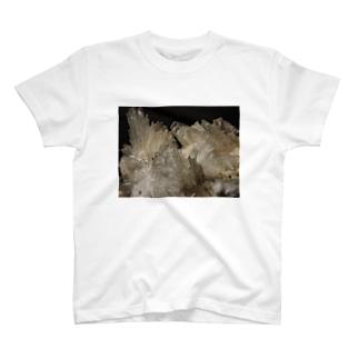 湯河原沸石 T-shirts