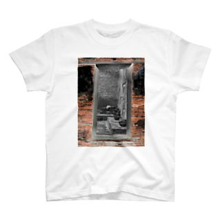 混沌コントロール屋さんのF7 T-shirts