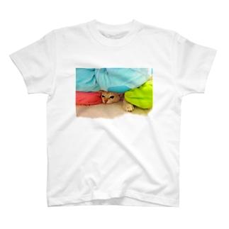 猫の俺だって色々な重圧と戦ってんだYO!シリーズ T-shirts