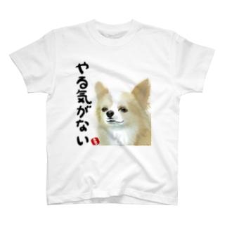 やる気がないチワワ T-shirts
