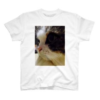 オリバー🐈 T-shirts