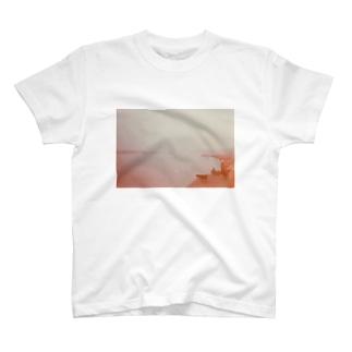 Ganga T-shirts