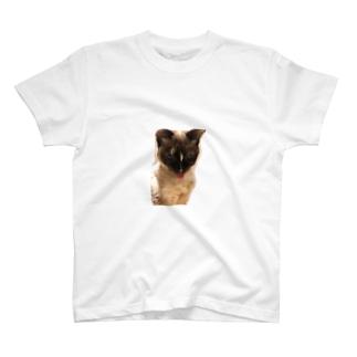 ネルさん T-shirts
