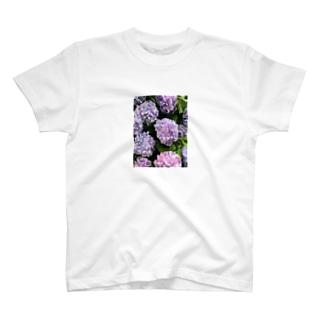 アジサイ(ぱすてる) T-shirts