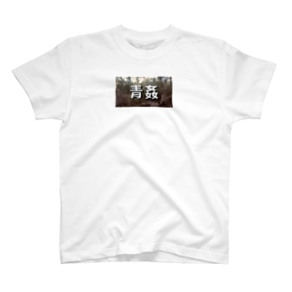 Japanese Public Sex T shirt T-shirts
