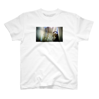 mm5 T-shirts