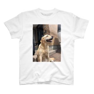 フローラ T-shirts