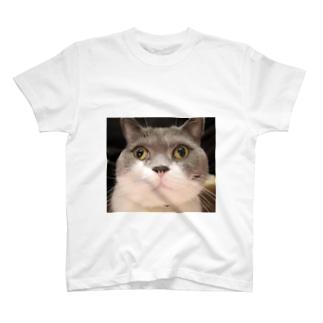 さるりーちゃんのつぶらな瞳 T-shirts