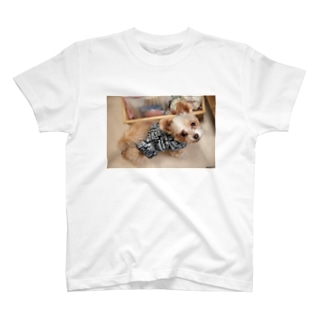 看板犬ラテ T-shirts