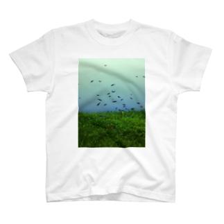 SUMIDA FISH T-shirts