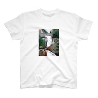 密林の風景 Tシャツ