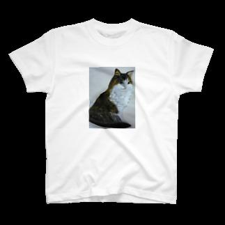 タコ夜勤@スタンプ制作致しますの猫のデザイン 油絵 T-shirts