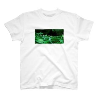 【黄色の世界】ミドリきのこTシャツ T-shirts