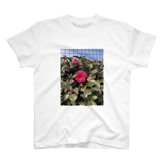 魅惑 T-shirts