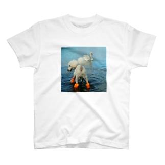 かわいいさんの激闘 T-shirts